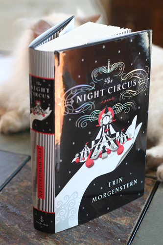 US-edition-the-night-circus-31793121-333-500